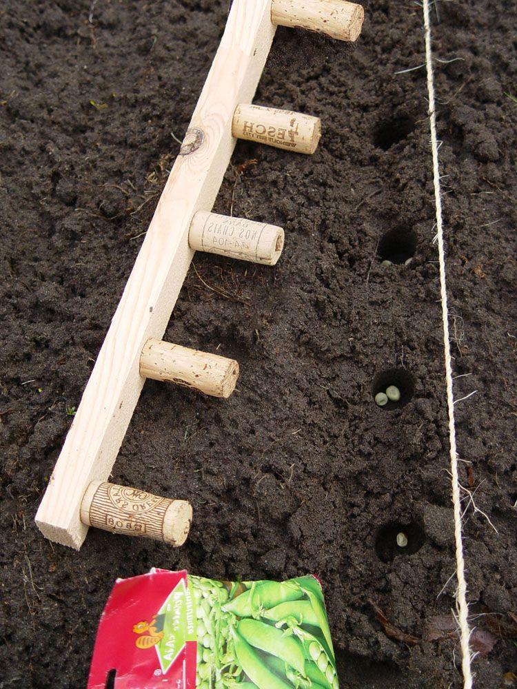 Weinkorken An Einer Holzleiste Garden Garten Ideen