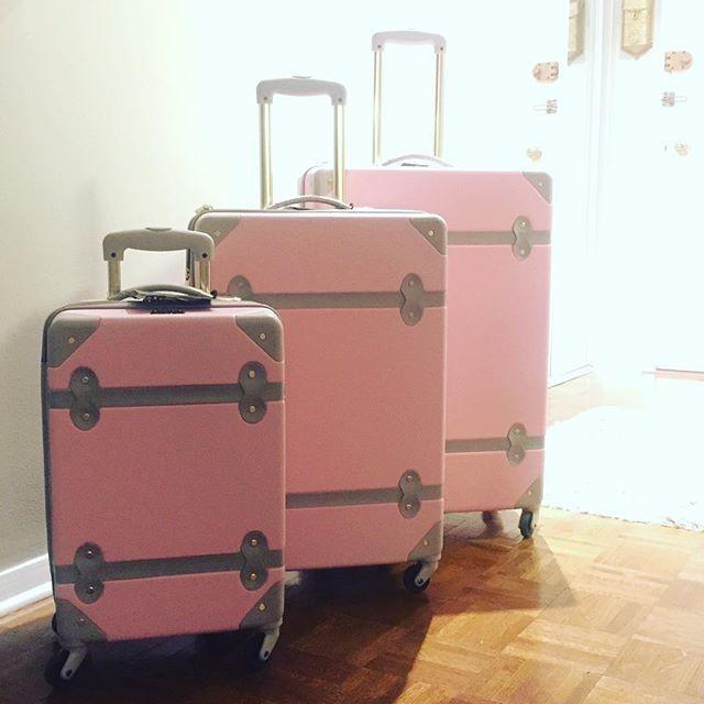 pink luggage, trunk luggage, dvf, diane von furstenburg, cute ...