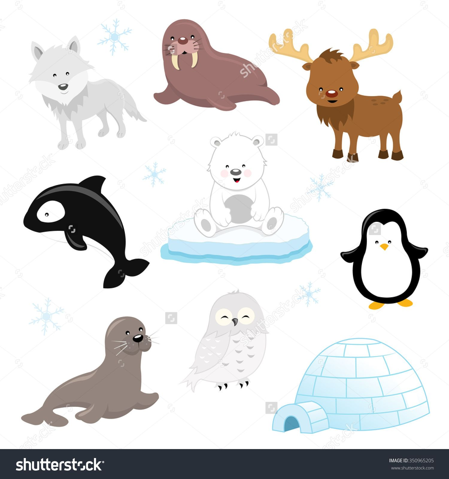 Image result for arctic animal clipart Arctic animals