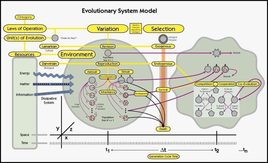 Praxis: de la teoría a la práctica social y educativa! (Educación Disruptiva)