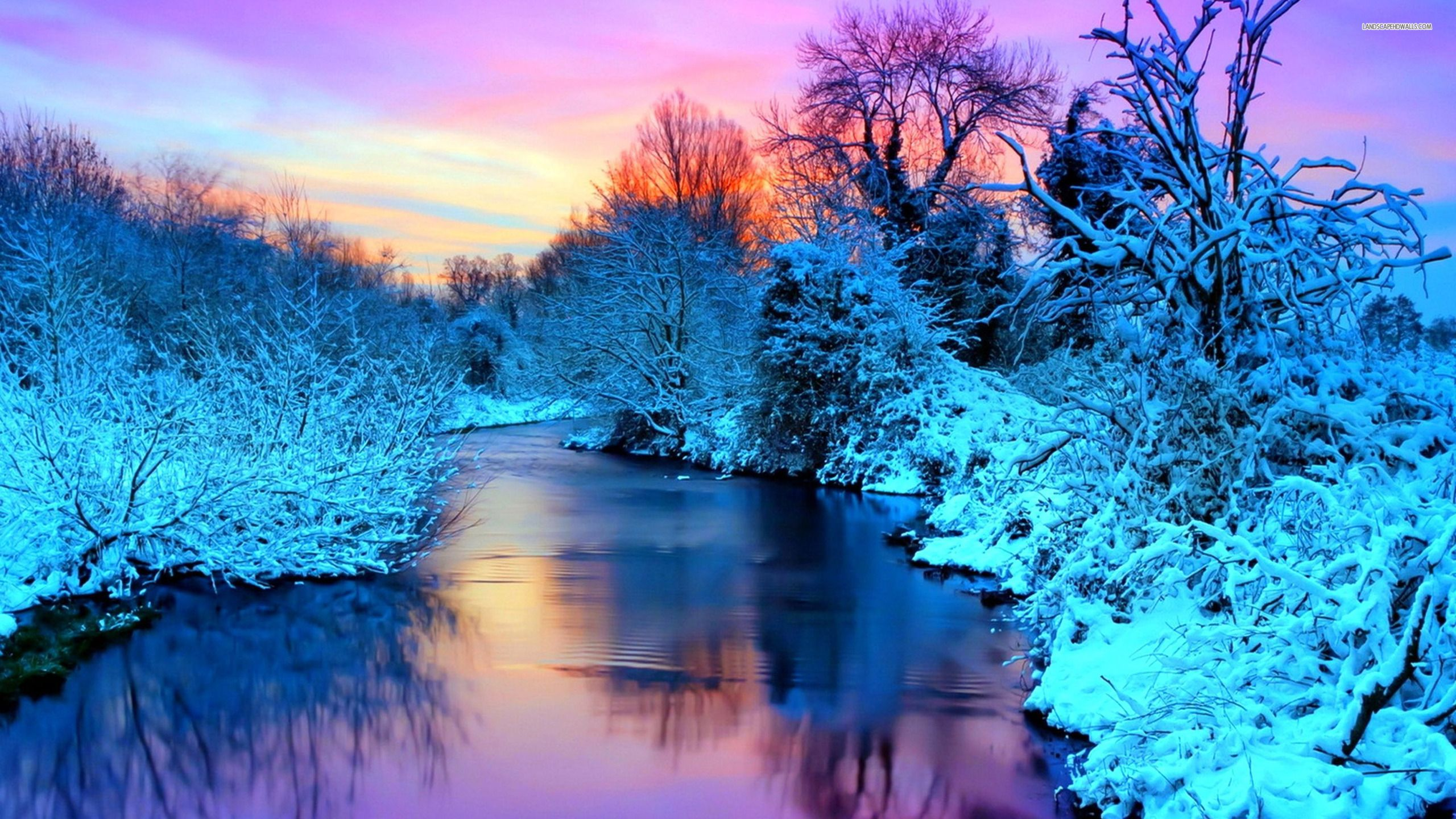 Free Winter Nature Wallpapers Wallpaper