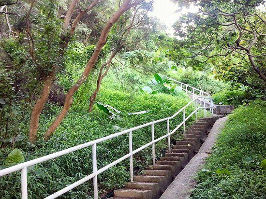 Photo of Wan Chai Green Trail