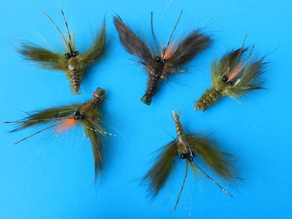 Trout Flies By Peter Carty New Zealand Fly Fishing Trout Fishing Fishing Guide
