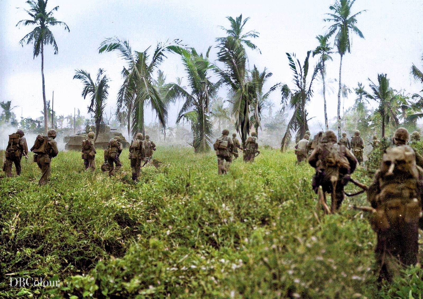 A tank-infantry team from the US 4th Marines advances slowly through the  dense scrub growth that characterized the terr… | War photography,  Infantry, History photos