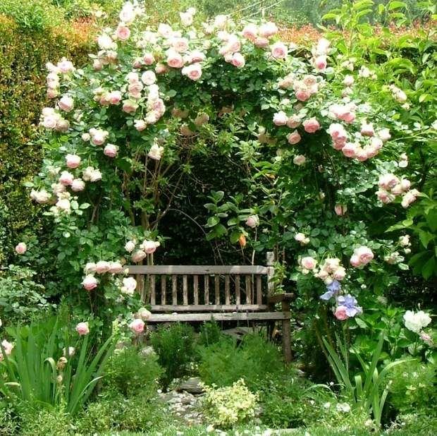wei e rosen kletterpflanzen gem tliche sitzecke holz. Black Bedroom Furniture Sets. Home Design Ideas