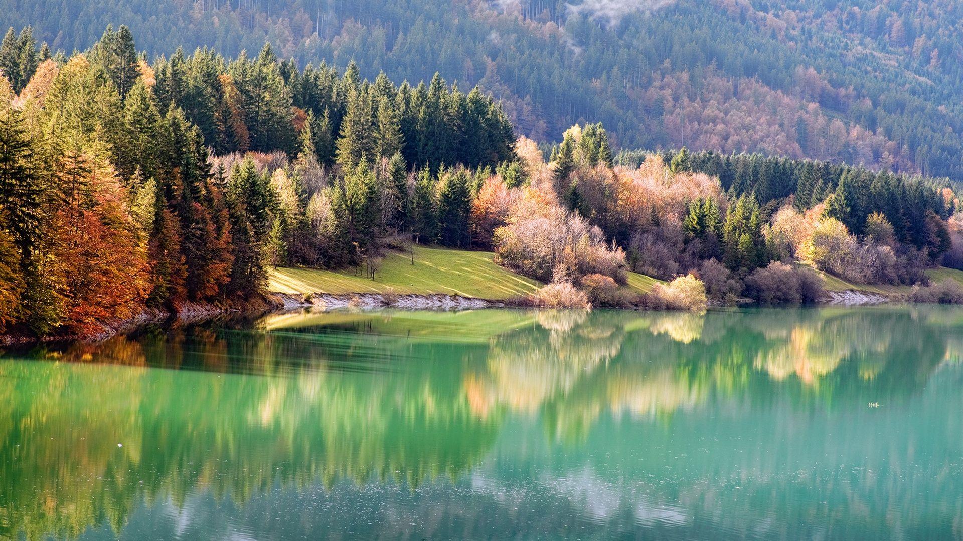 Naturelles Foret Riveraine A L Automne Fonds D Ecran 1920x1080 Full Hd Paysage Automne Fond Ecran Foret
