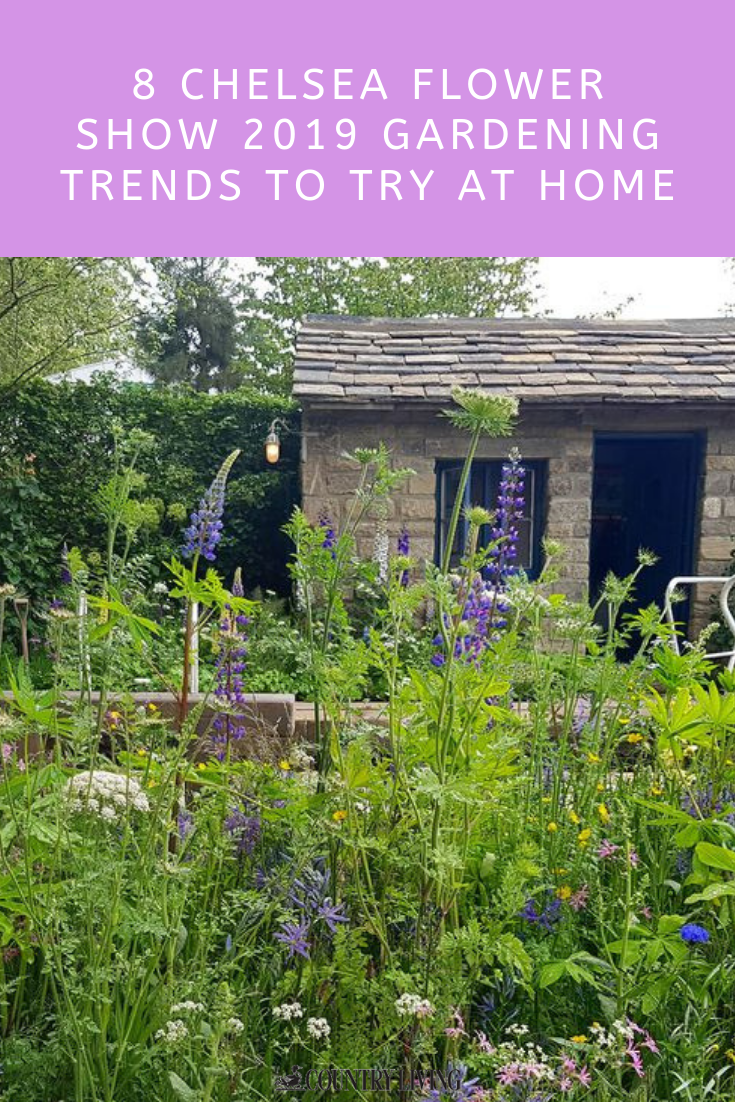 8 Gardening Trends From Chelsea 2019 You Can Try At Home Chelsea