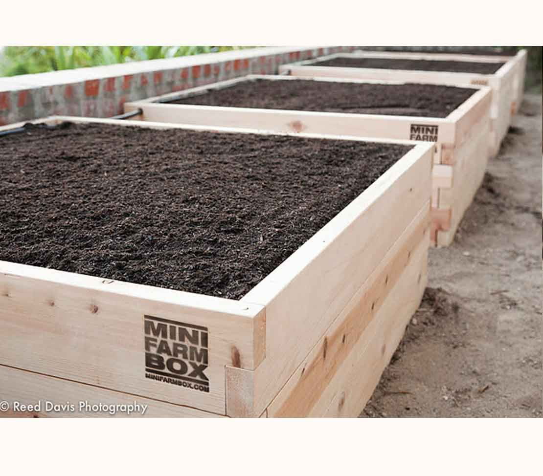 Raised Garden Kits For Planting
