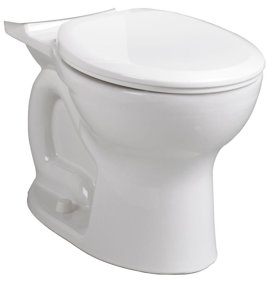 Cadet Pro Single Flush Round Bowl Toilet Bowl Only In White Products Toilet Toilet Bowl Bathroom