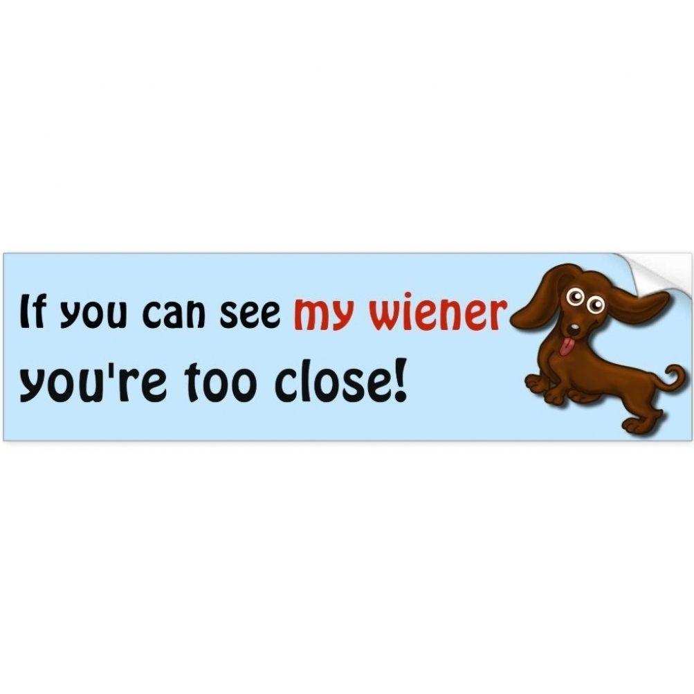 Customized Dog Socks Put Your Cute Dog On Custom Socks Dog Etsy Funny Dachshund Funny Bumper Stickers Dog Bumper Stickers [ 1003 x 1003 Pixel ]