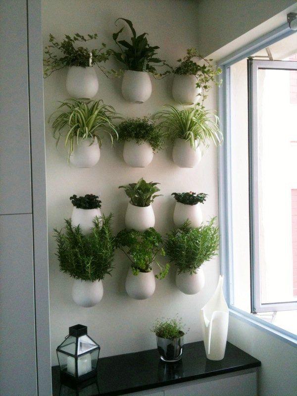 Kitchen Herb Wall For Me Probably In Brick Pots Krauterwand Krautergarten Kuche Krautergarten Drinnen