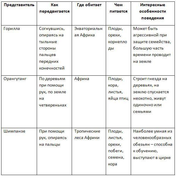 Кроссвордыс ответами по истории россии 7 класс с ответами