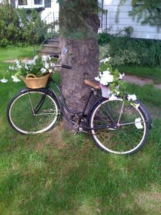 Yard With Vintage Bike Yahoo Image Search Results Bike