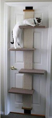 Space Saving Easy To Hang Door Mounted Cat Climber Witzige