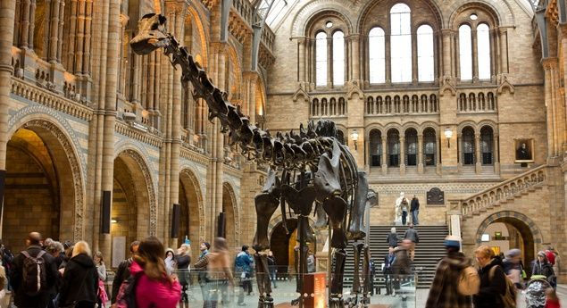 20 Budget Travel 10 Most Family-Friendly Cities in Europe | Budget Travel -  A venerable resident of London's Natural History Museum, popular with kids of all ages. (From: 10 Most Family-Friendly Cities in Europe)