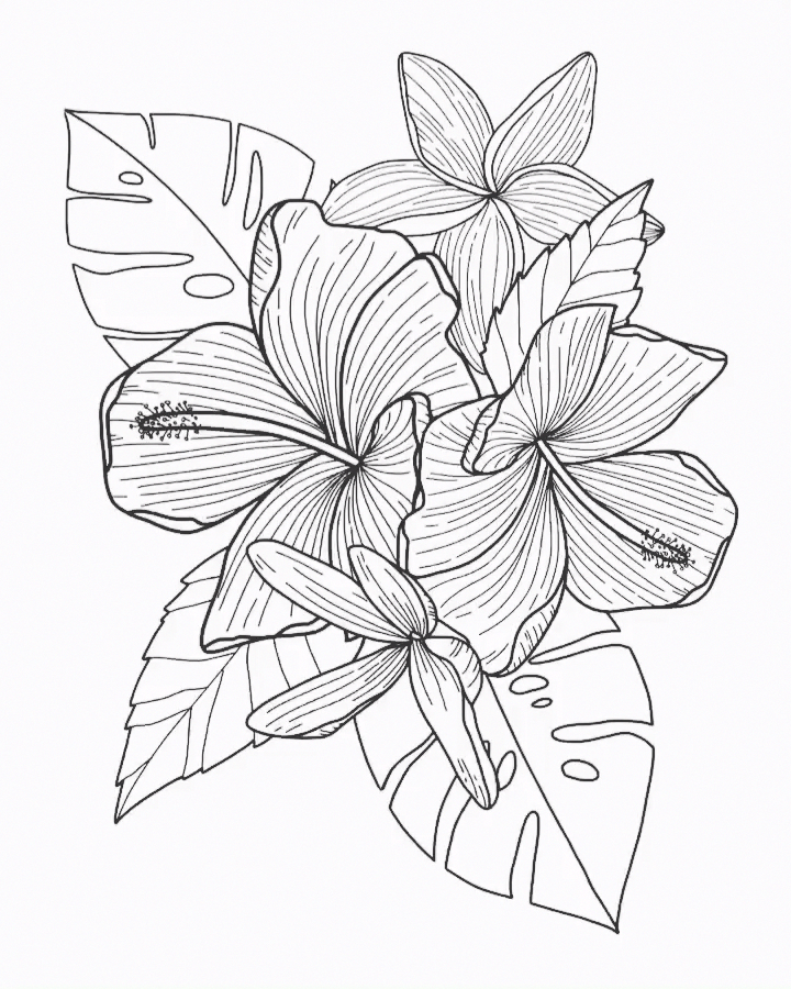 Floral Illustration On Ipad Pro Apple Pencil Procreate App Photoshoptutorialvideo Floral Illustrations Flower Drawing Tutorials Zootopia Coloring Pages