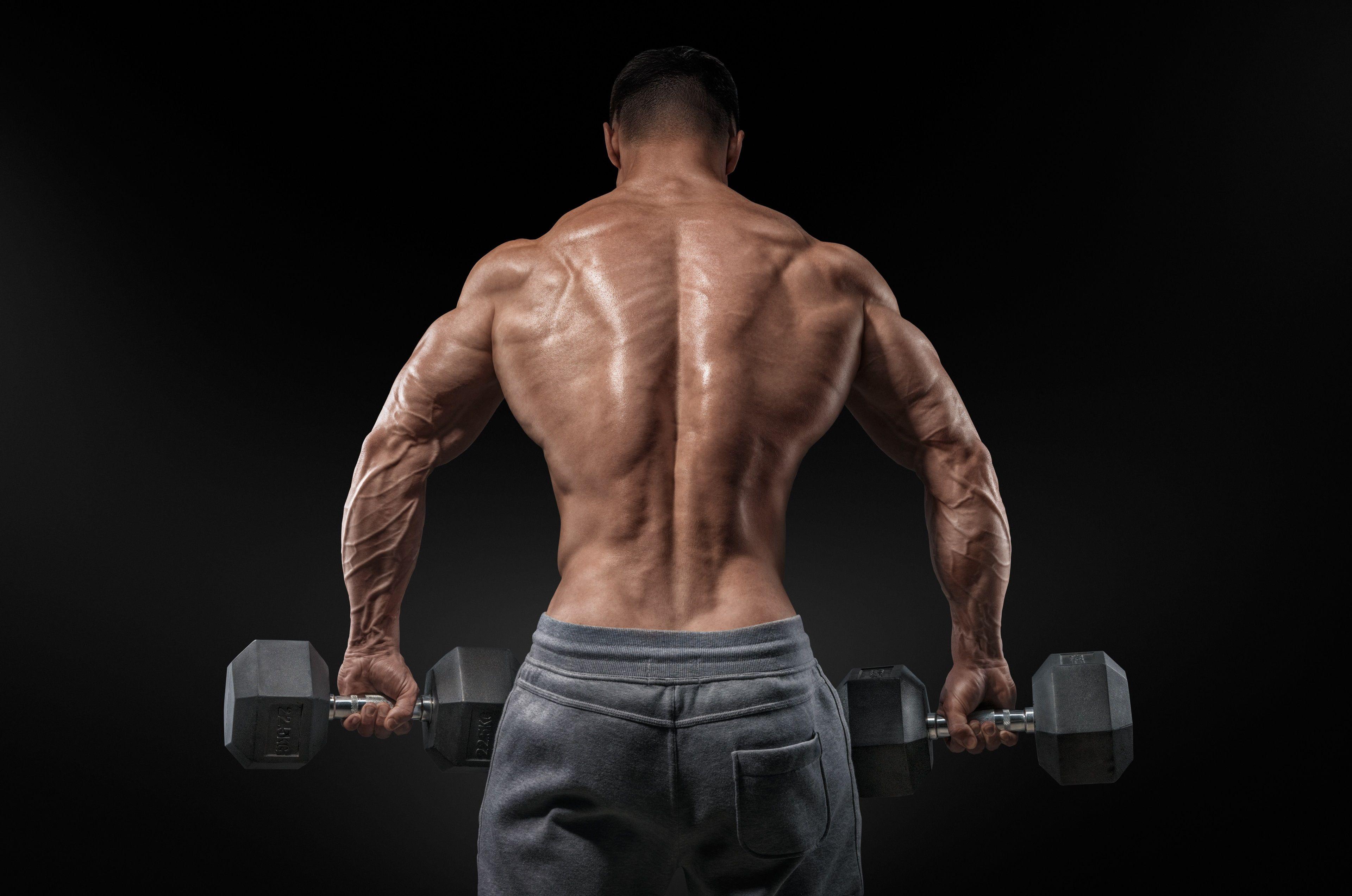 3840x2545 Bodybuilding 4k Free Wallpaper Background Bodybuilding Bodybuilding Photography Dumbbell Back Workout