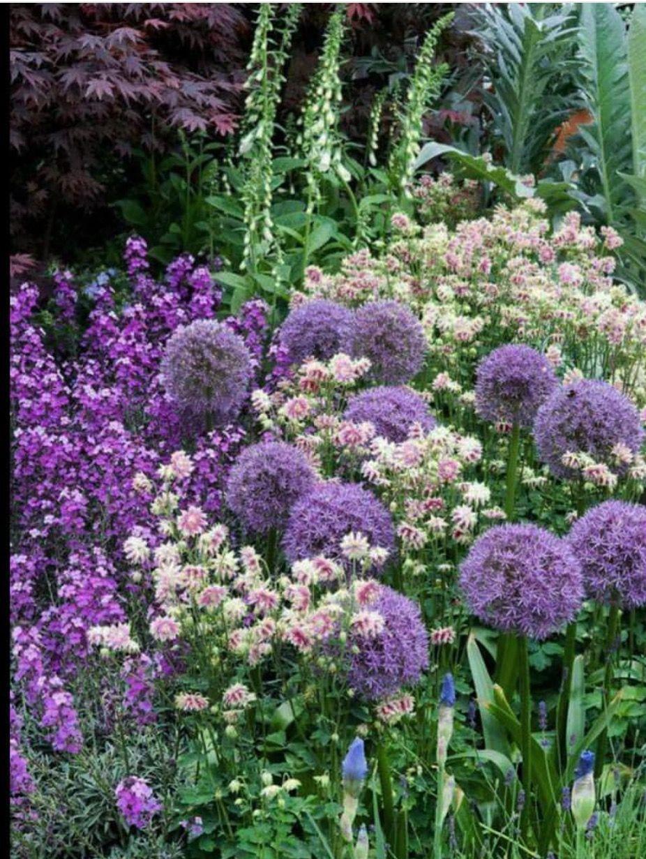 Pin by cecilia quintero on bosques y jardines pinterest gardens