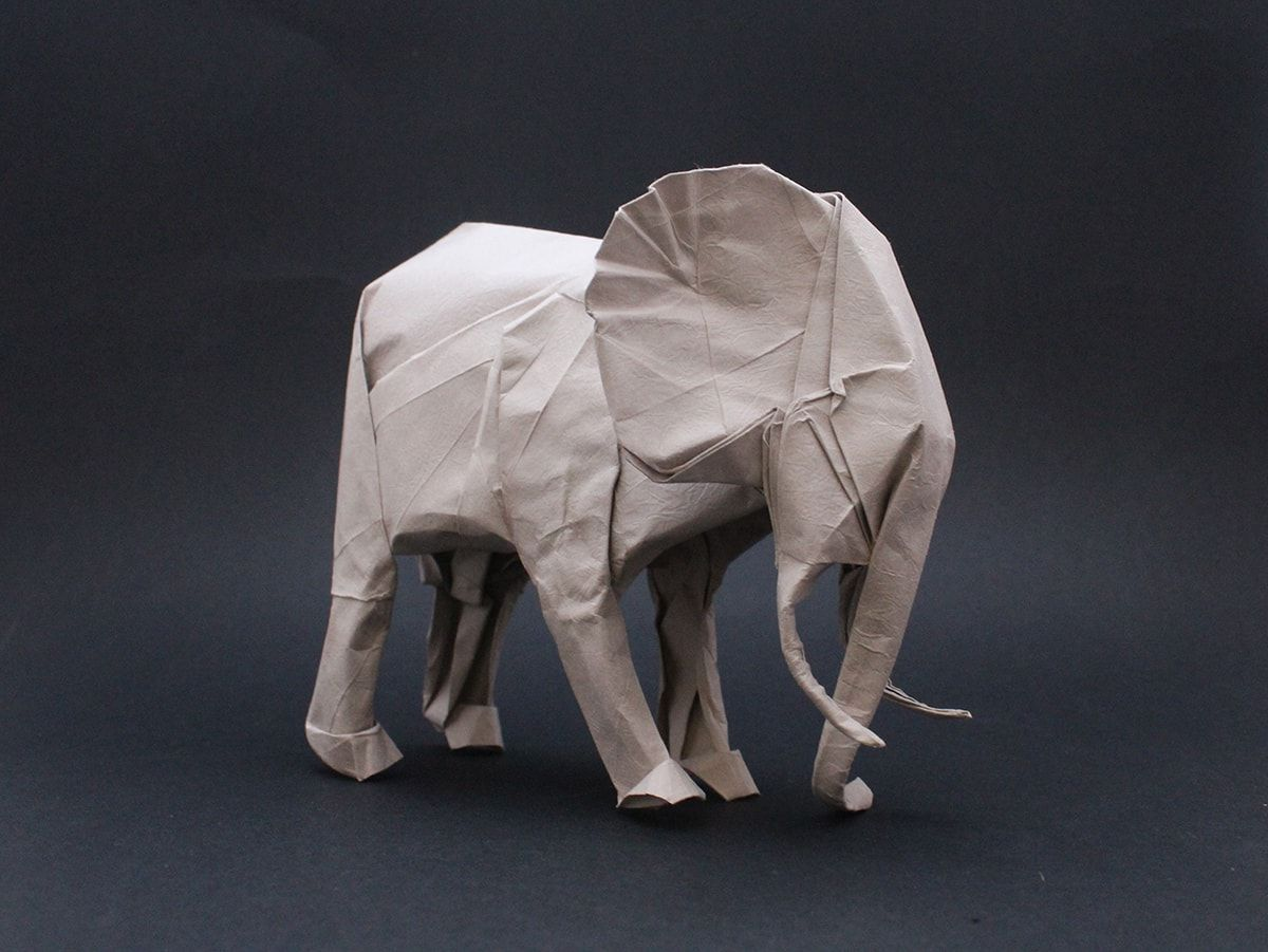 Photo of How To Make African Animals Origami