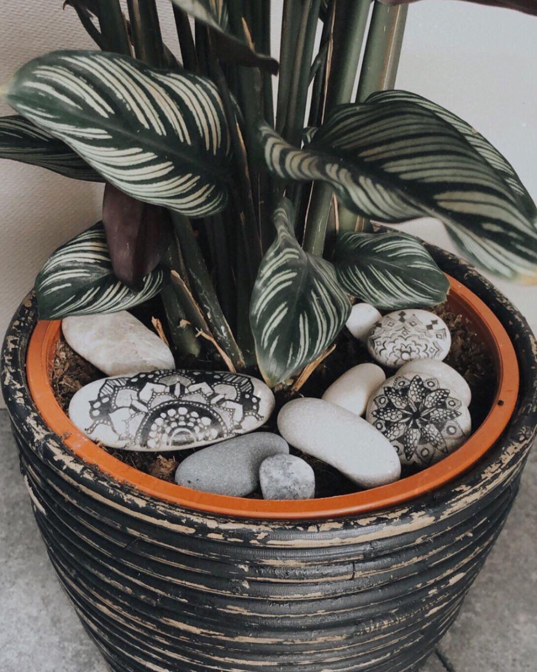 Vintage En Ik On Instagram Te Koop Decoratie Stenen Leuk Setje Stenen Met 3 Mandala Stenen 6 50 Enthousiast Reageer Dm Met Verkocht B