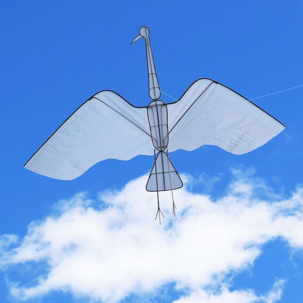 Crane Kite In Color