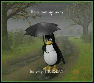 Thursday morning | Walking in the rain, Its raining its