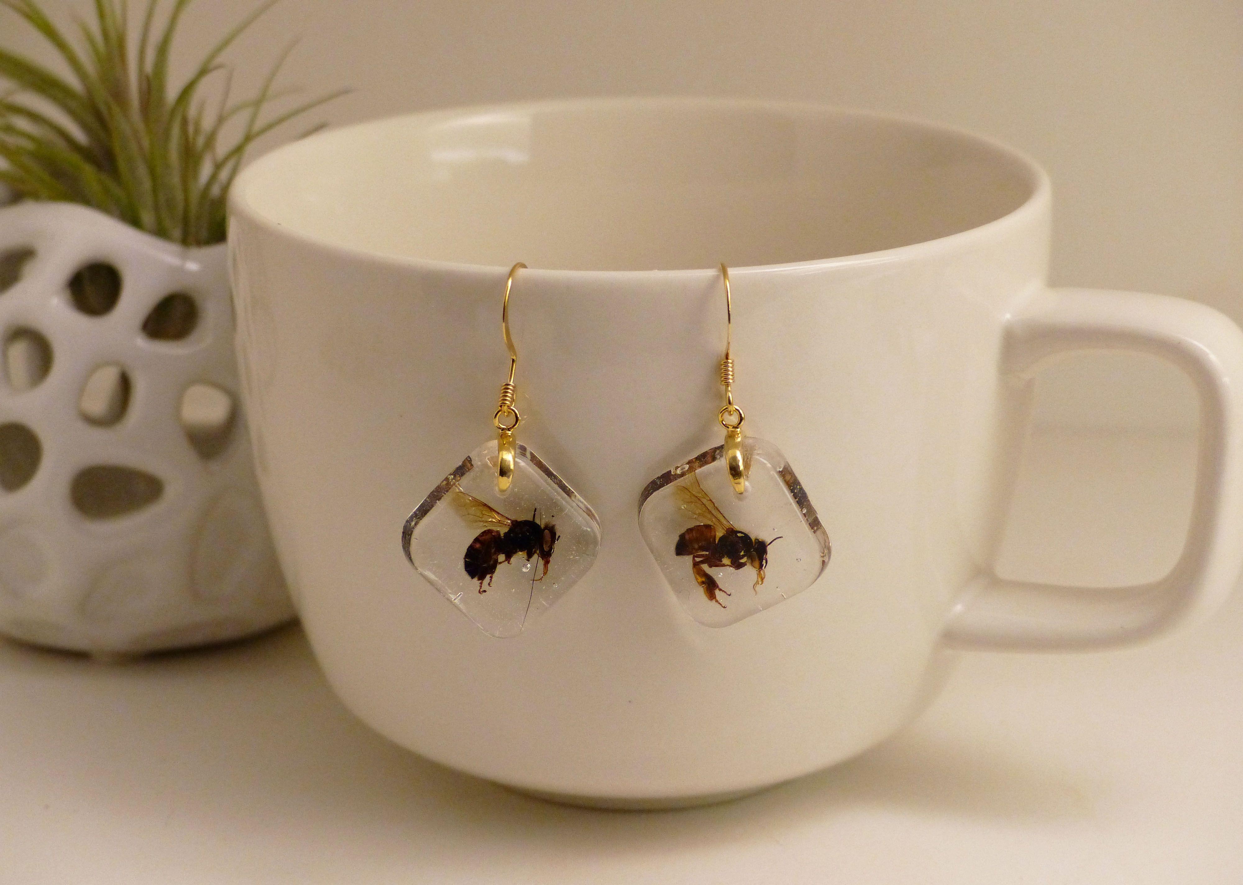 Real Honey Bee Earrings By Ocelli Creations