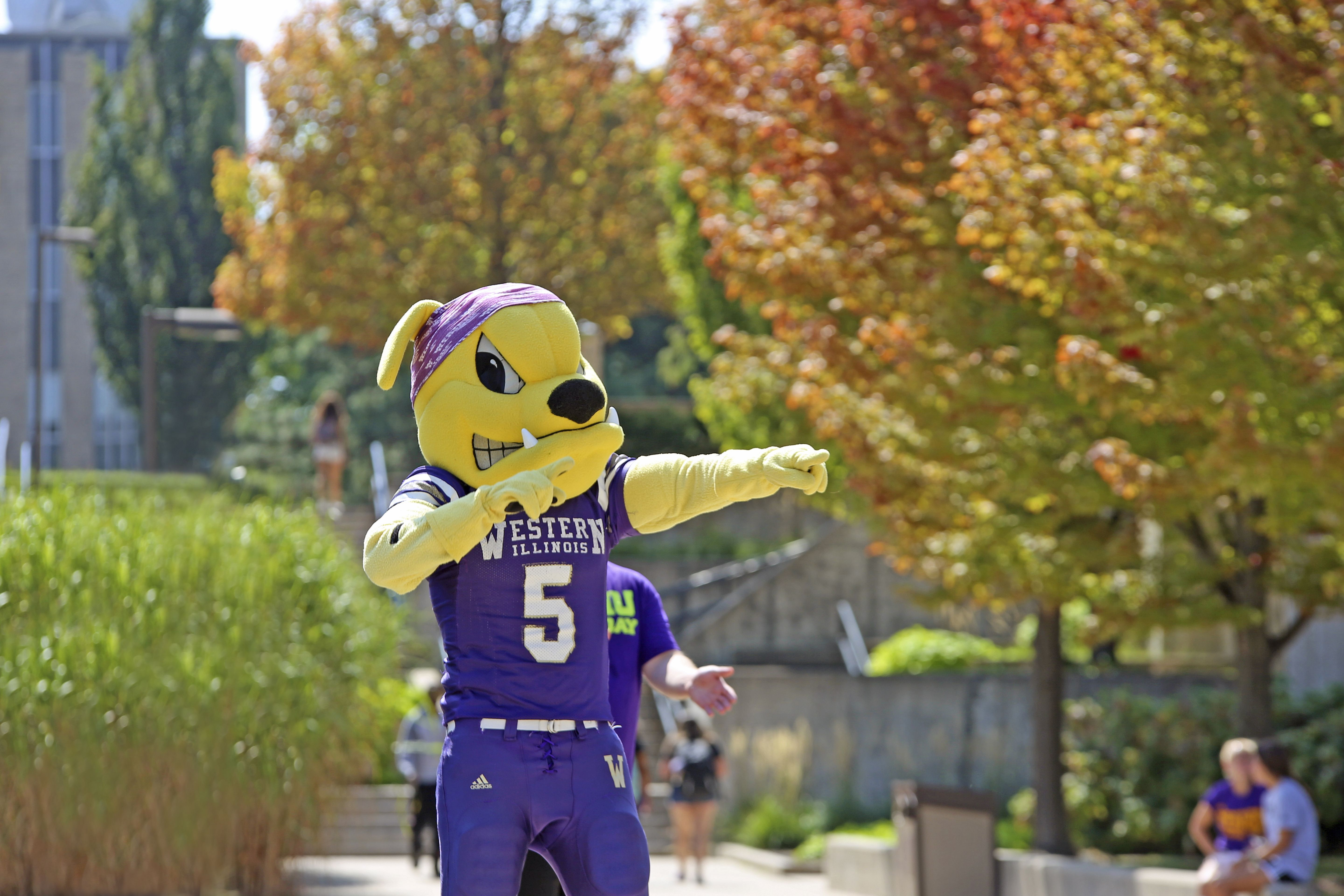 Western Illinois University College Mascot Rocky Home Of The