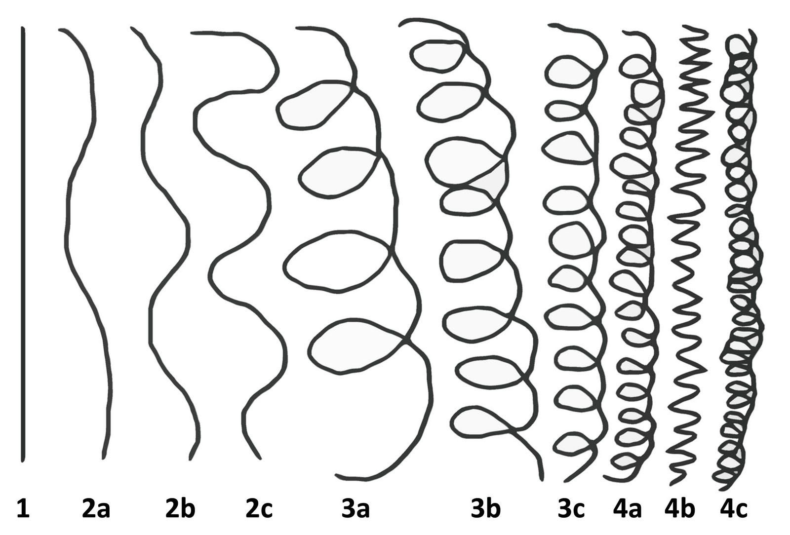 Look At The Hair Type Chart Type 4c Is Also A Coil It S Just Tight Natural Hair Styles Curly Hair Styles Hair Type