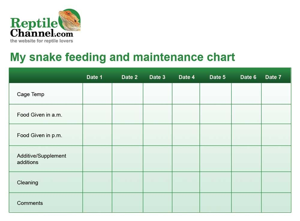 Print out this free snake feeding and maintenance chart to help you print out this free snake feeding and maintenance chart to help you stay on track when it comes to feeding your snake ccuart Images