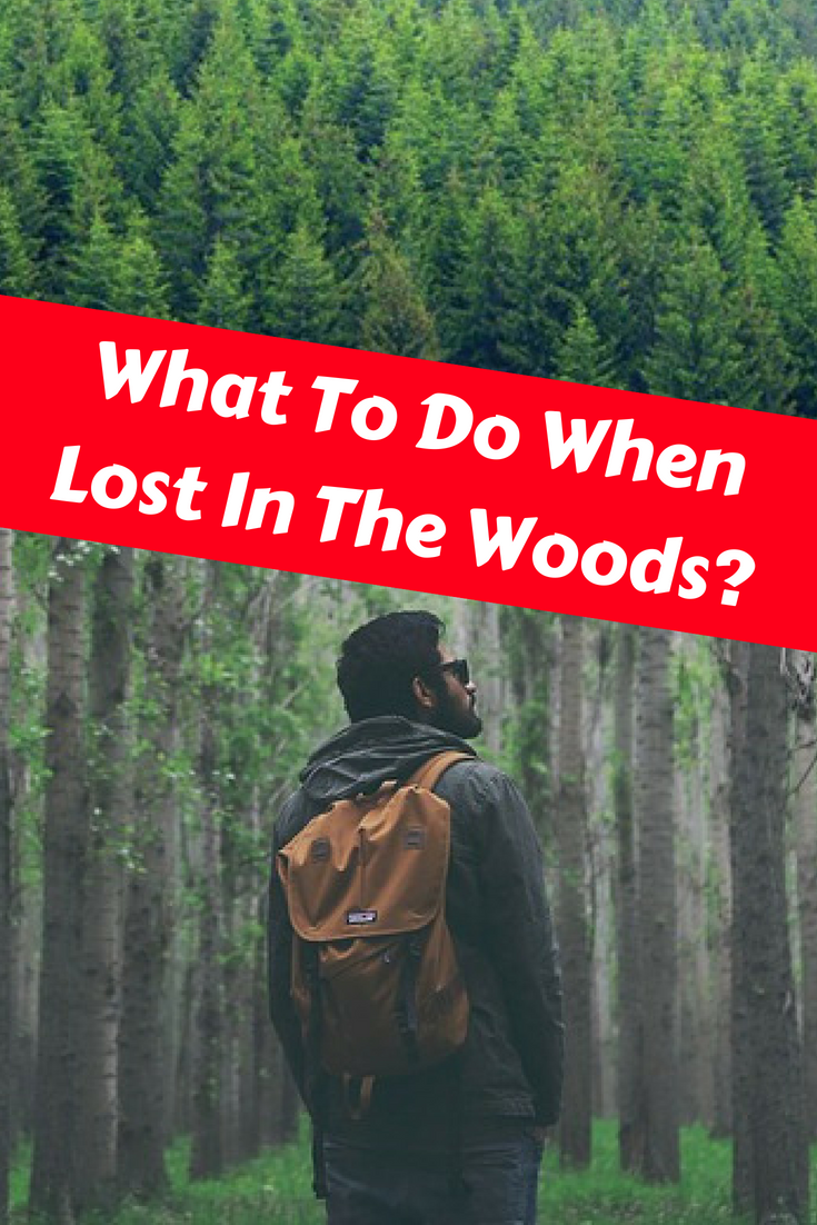 How to find a lost person in the woods