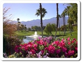 Palm springs california travels in my life pinterest palm springs california mightylinksfo Images