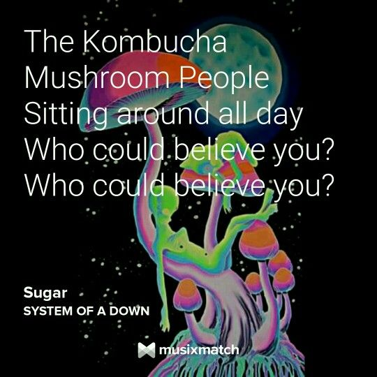 Sugar System Of A Down Lyrics With Images System Of A Down