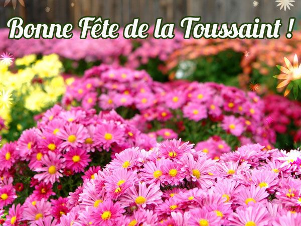 En Ce 1er Novembre Bonne Fete De La Toussaint Http Www