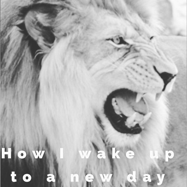 Welcome the #newday like its the #greatest #opportunity ever presented to #you and witness the #positive #results by i_am_ketorus