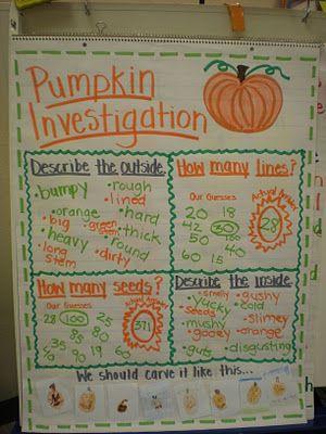 pumpkin investigation chart