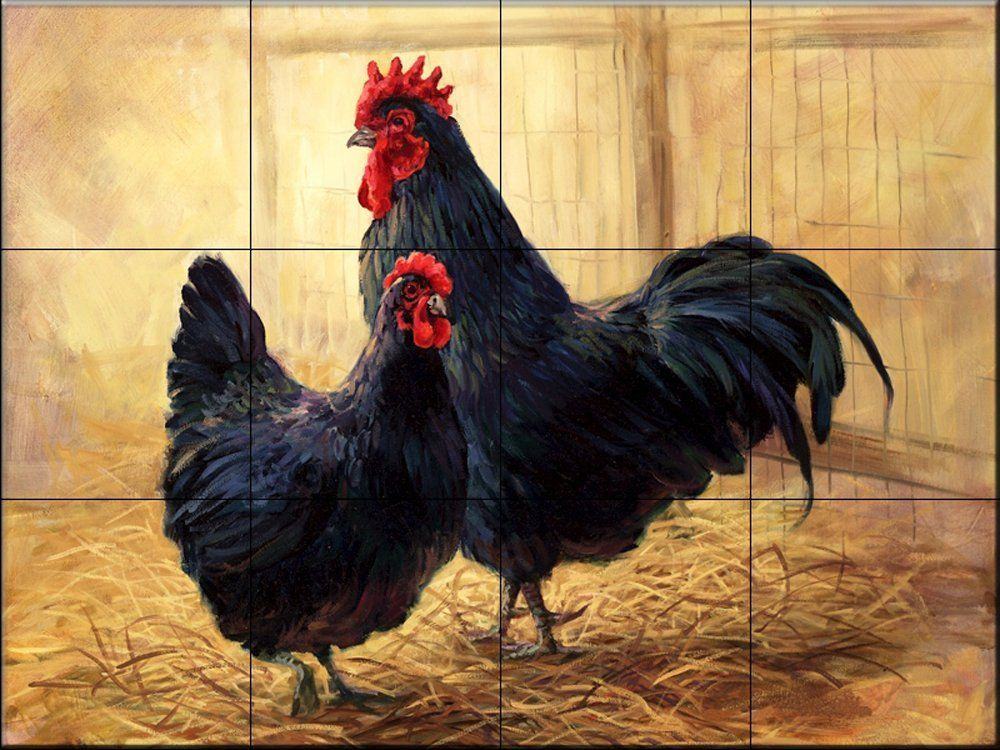 Amazon.com: Hen & Rooster by Laurie Snow Hein - Kitchen Backsplash / Bathroom wall Tile Mural: Home Improvement