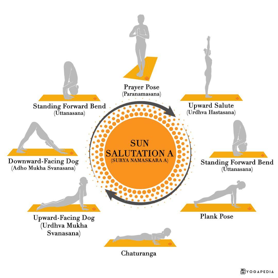 Sun Salutation A Versus Sun Salutation B The Difference You Should Know Sun Salutation Yoga Sun Salutation Sun Salutation B