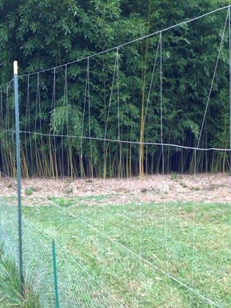 Low cost Fishing line deer fence Using 10 ft wood corner posts
