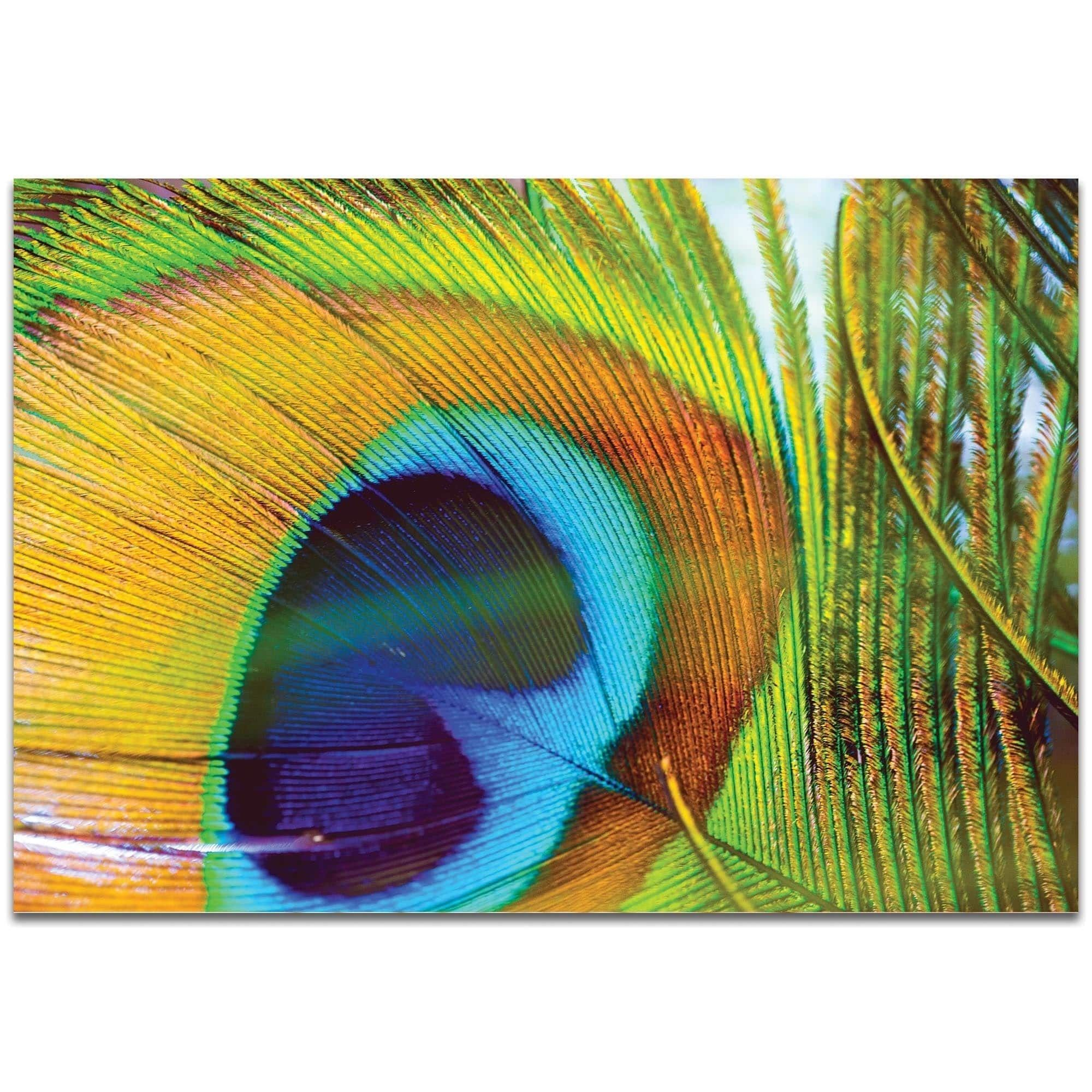 Peacock colors products pinterest peacock colors online art