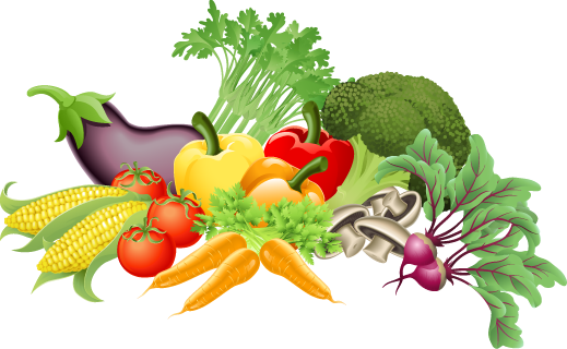Ideas For Healthy Food Project