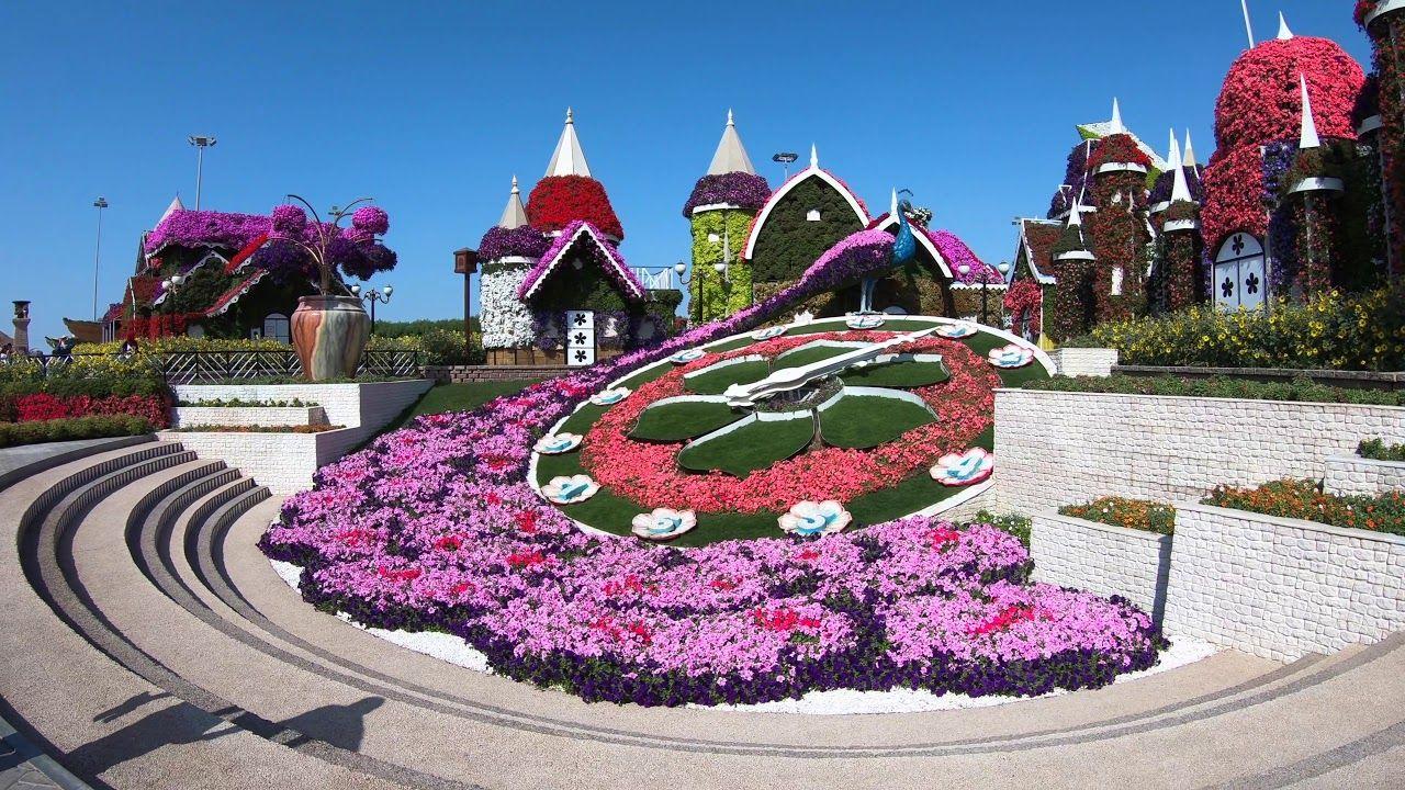 Dubai Miracle Garden (4K Video) YouTube Miracle garden
