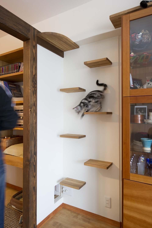猫が喜び 人も楽しい インテリアに溶け込む キャットウォーク Yahoo 不動産おうちマガジン ねこ インテリア インテリア 収納 キャットタワー