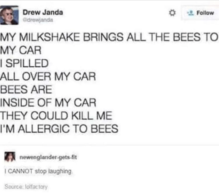 Best Funny Tweets 13 Funny Tweets All About Bees That Will Have You Buzzing With Laughter 13 Funny Tweets All About Bees That Will Have You Buzzing With Laughter - I Can Has Cheezburger? 9