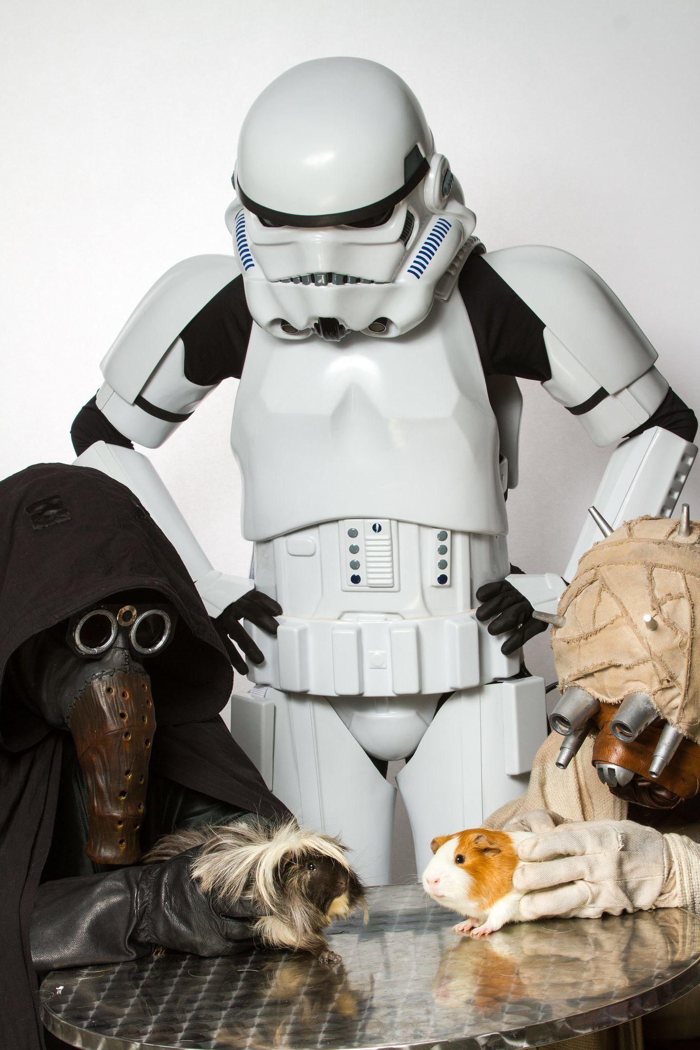 Star Wars Characters Pose With Shelter Pets For A Unique Spin On A
