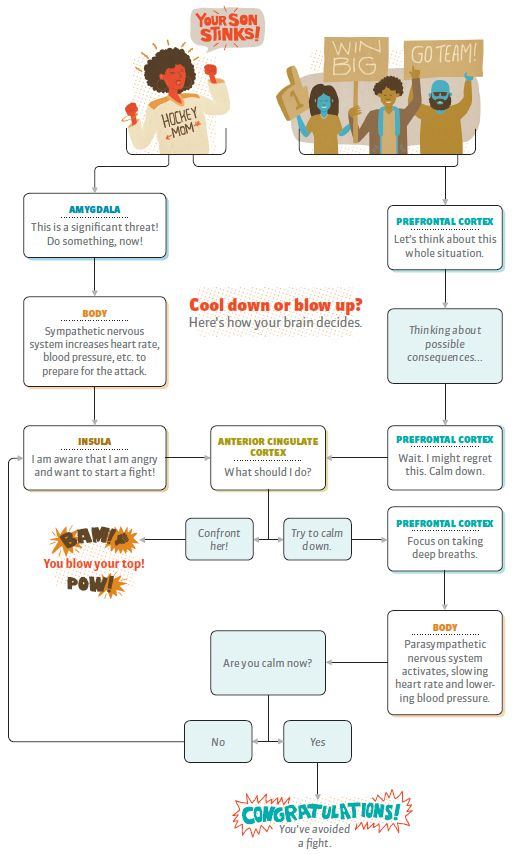 Flow Chart- prefrontal response??? Poverty Pinterest - flowchart examples for kids