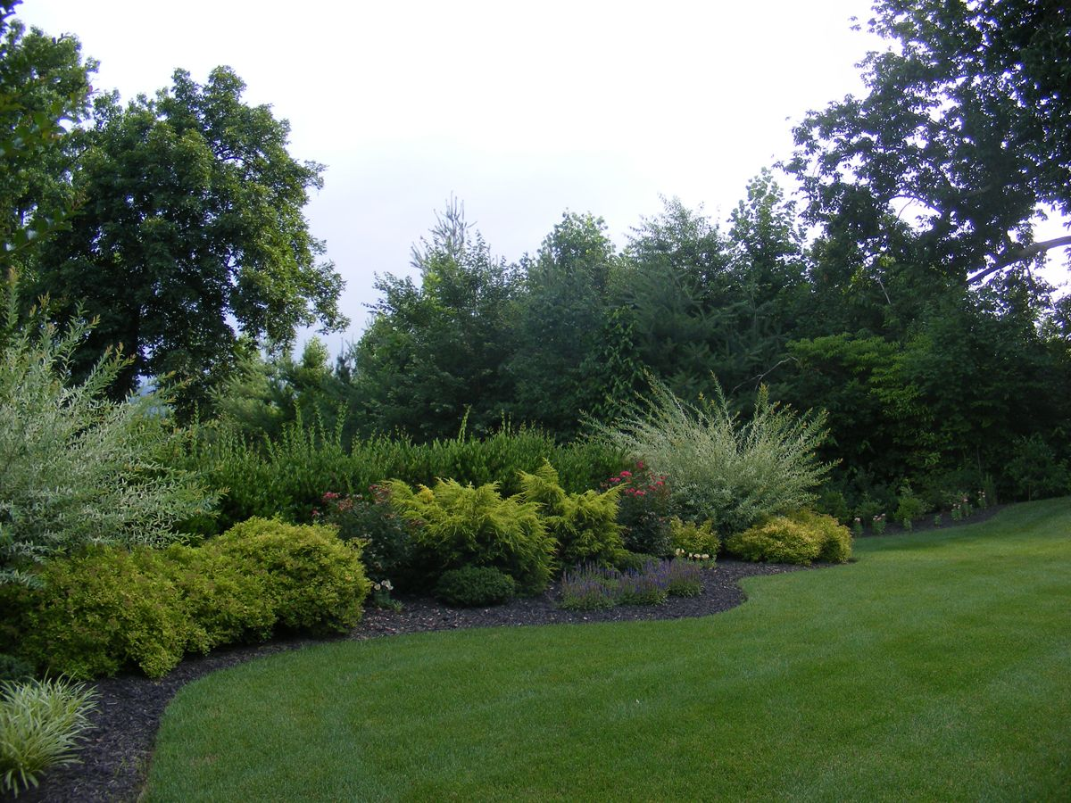 Garden trees for screening  Another of Jeffus gardens in Tennessee  Front house  Pinterest