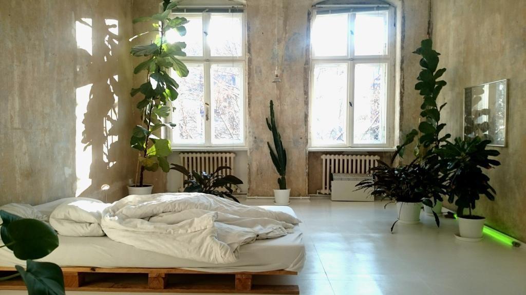 Wunderschönes lichtdurchflutetes Schlafzimmer mit grünen Pflanzen - schlafzimmer style
