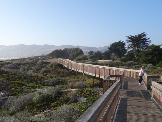 Ranked Of 5 Accommodations In Pismo Beach