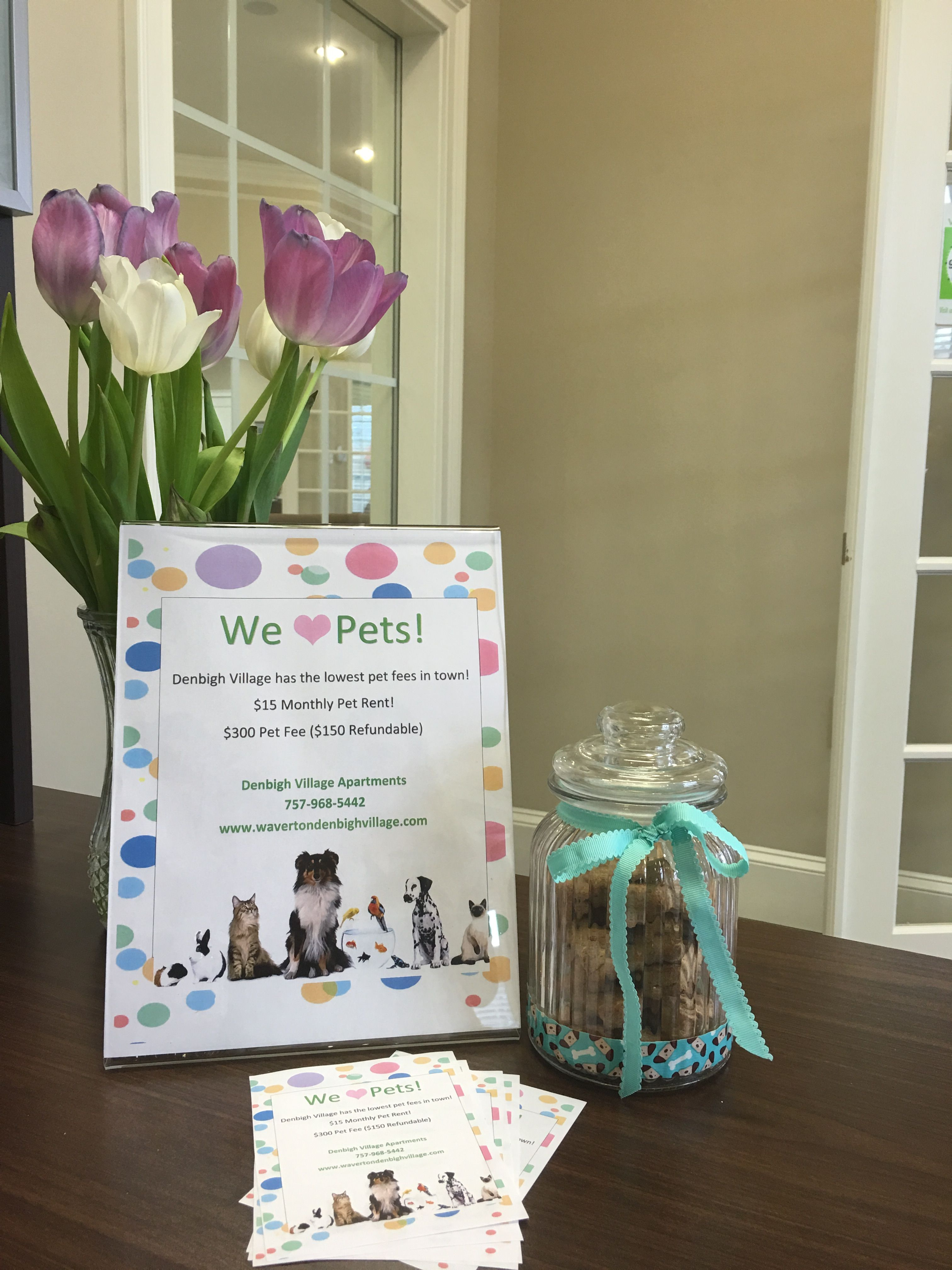 Apartment Marketing Idea For Pet Friendly Communities